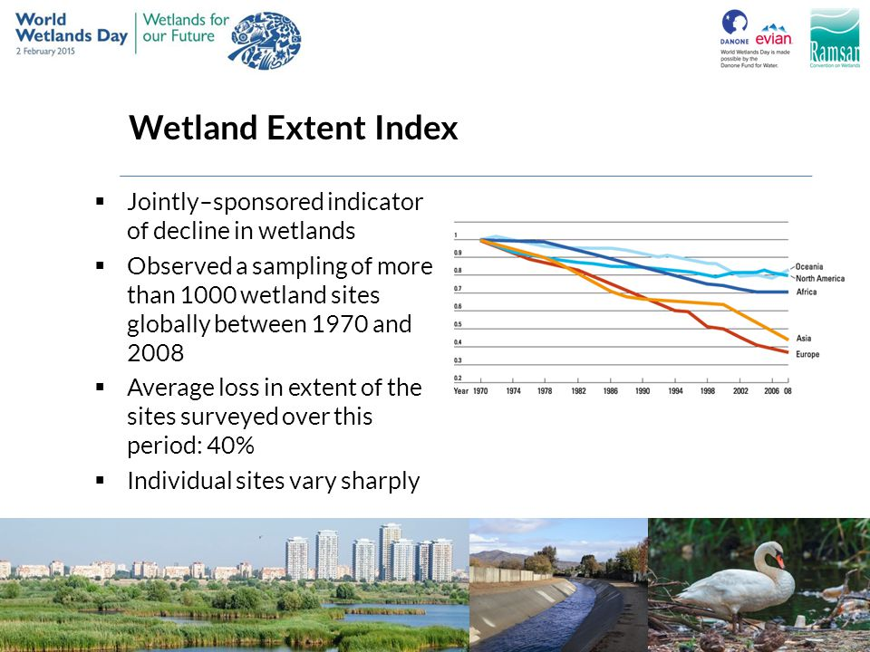 Wetland Extent Index  Jointly–sponsored indicator of decline in wetlands  Observed a sampling of more than 1000 wetland sites globally between 1970
