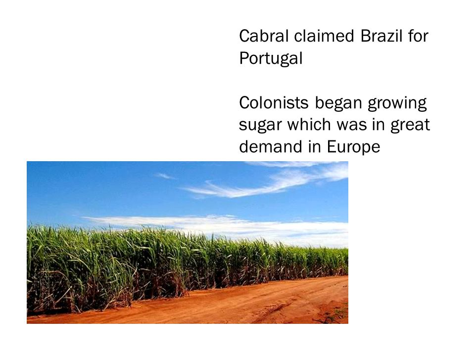 Cabral claimed Brazil for Portugal Colonists began growing sugar which was in great demand in Europe