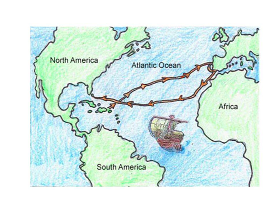 Other Explorers 1500 – Portuguese explorer Cabral reached Brazil 1501 - Amerigo Vespucci traveled along coast of S.