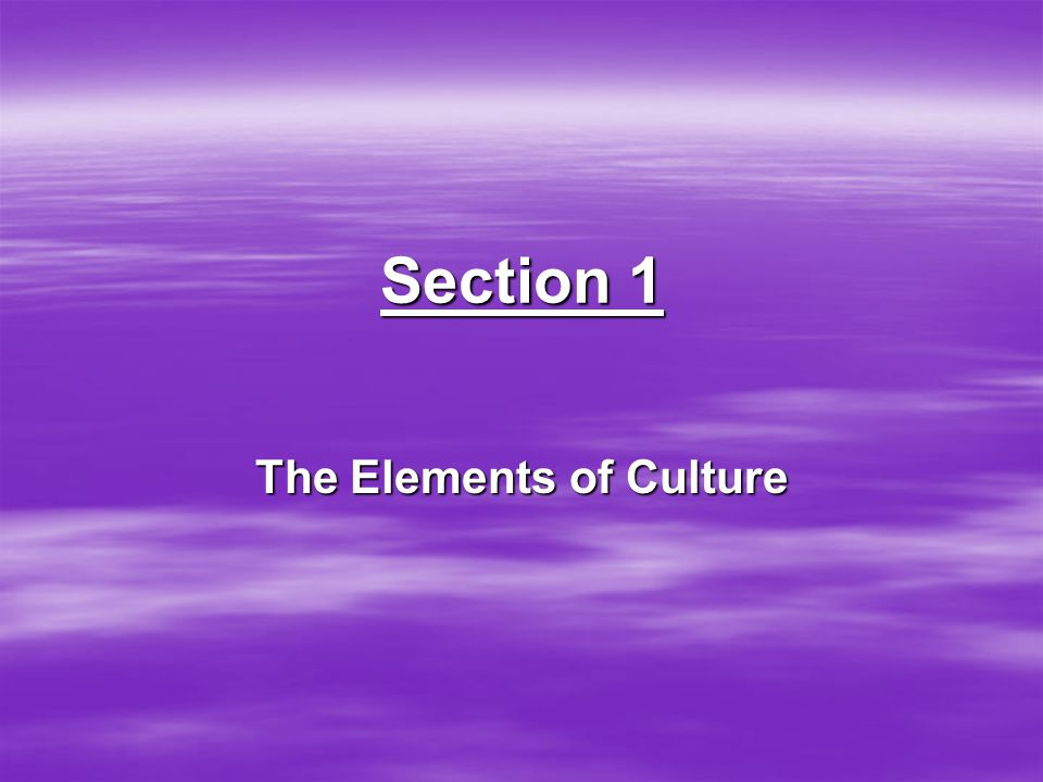 Section 1 The Elements of Culture
