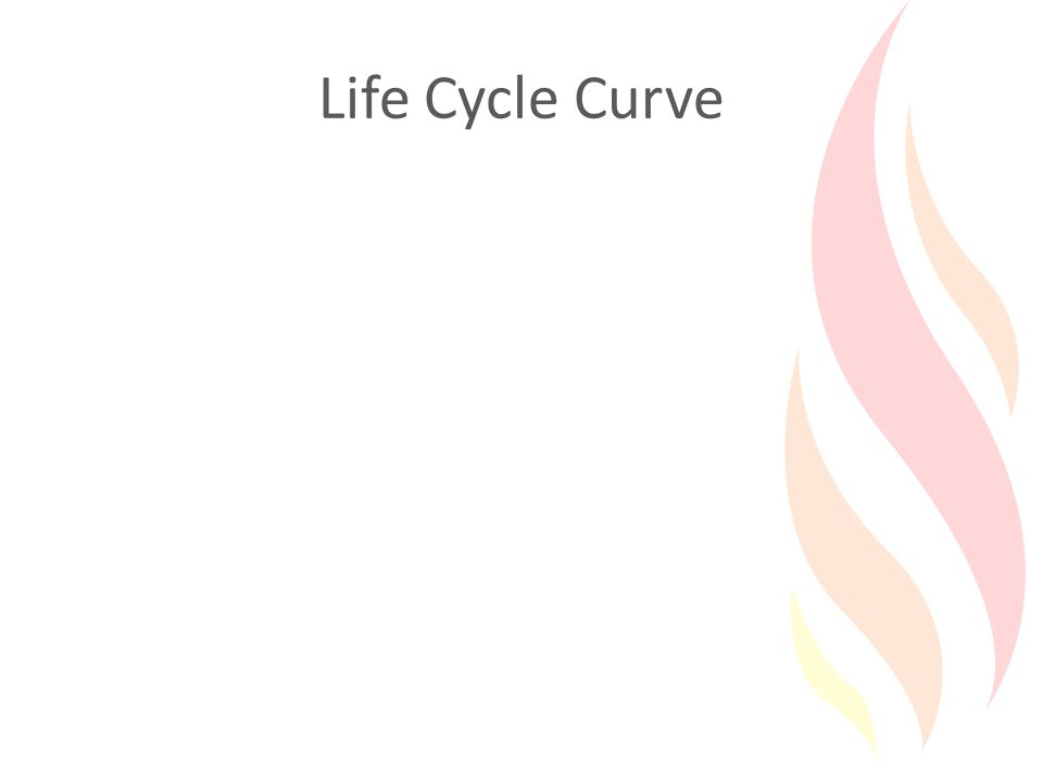 Life Cycle Curve