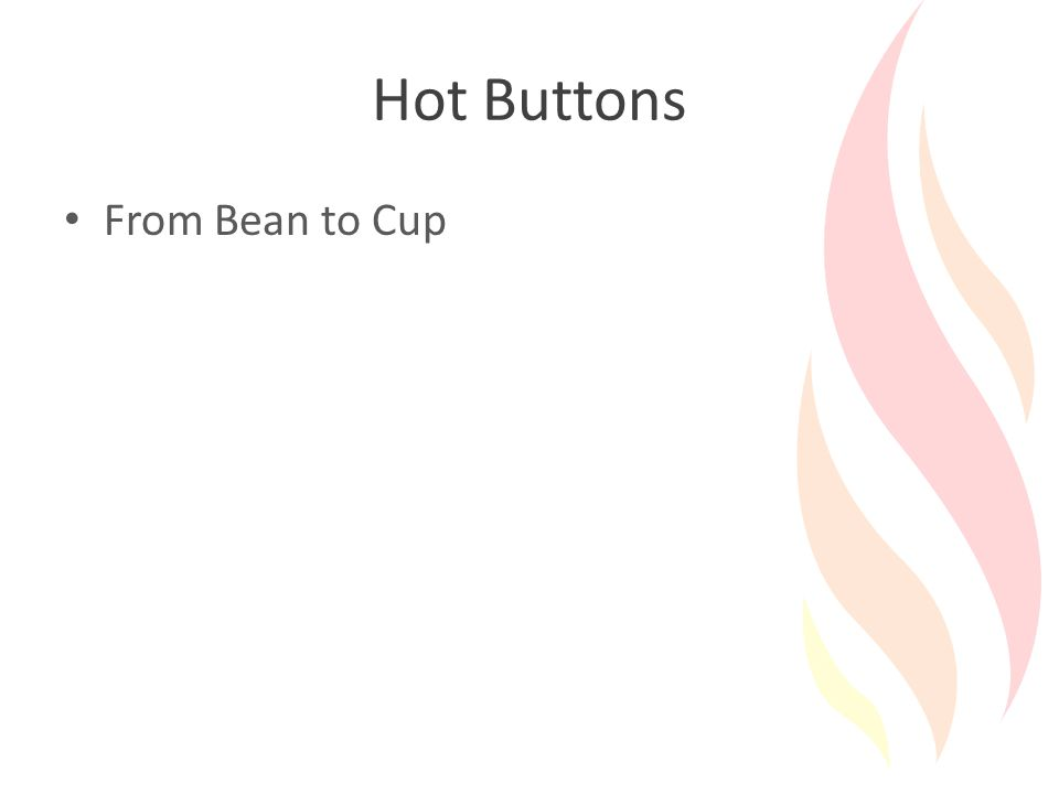 Hot Buttons From Bean to Cup