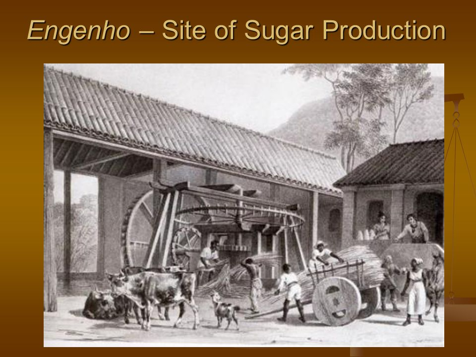 Engenho – Site of Sugar Production