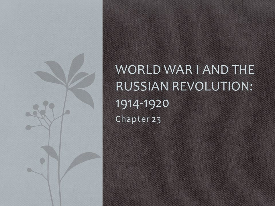 Big Questions to Think About Did the reasons for going to war in 1914 turn out to be worth it.