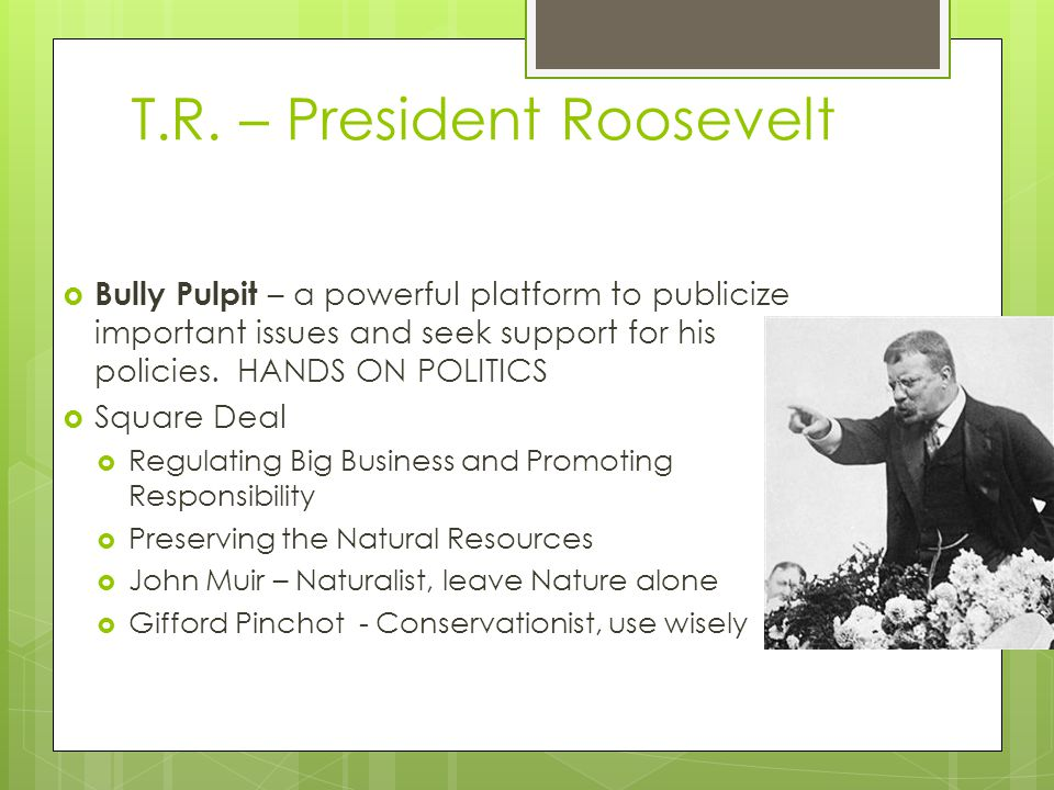 T.R. – President Roosevelt  Bully Pulpit – a powerful platform to publicize important issues and seek support for his policies. HANDS ON POLITICS  S