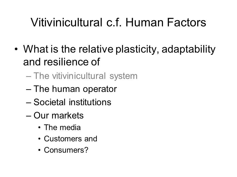 Vitivinicultural c.f.