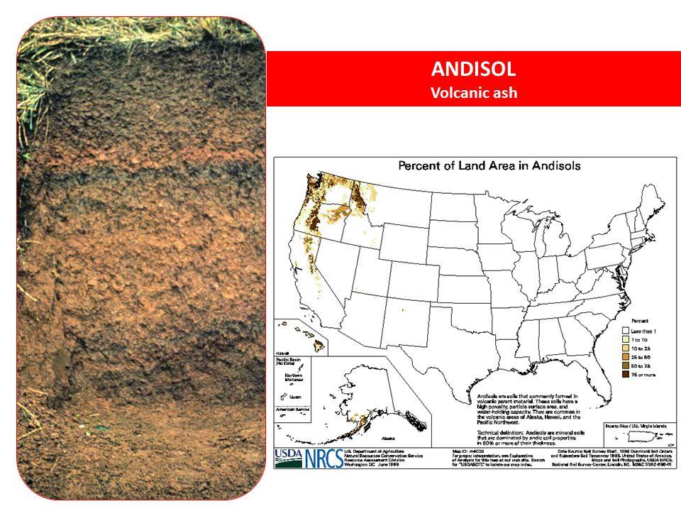 ANDISOL Volcanic ash