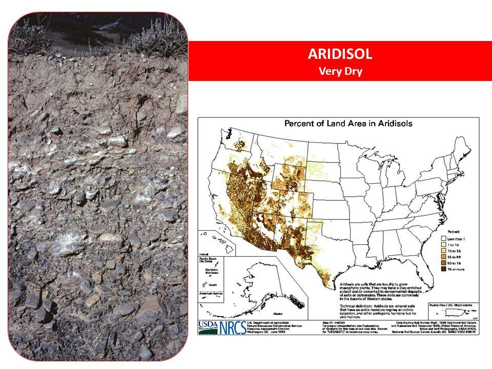 ARIDISOL Very Dry