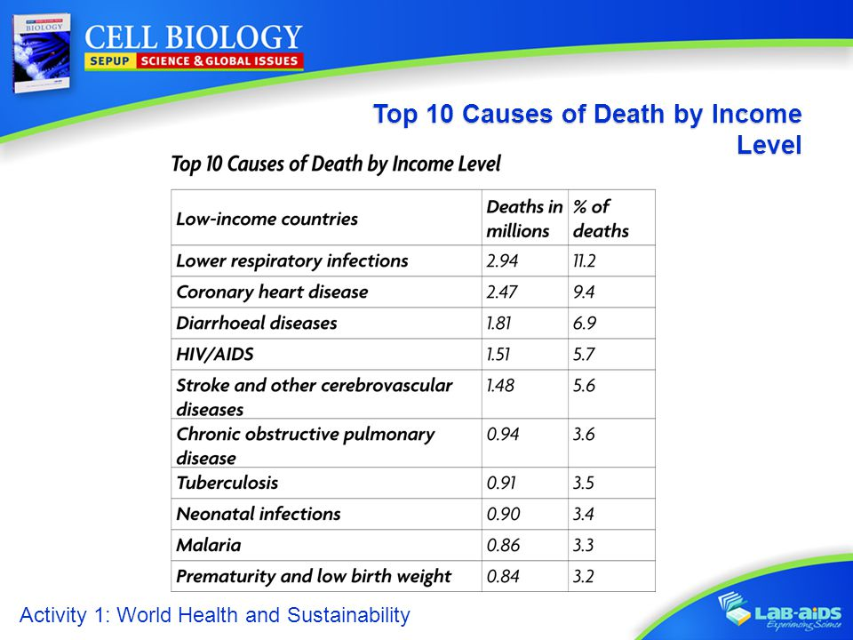 Activity 1: World Health and Sustainability Top 10 Causes of Death by Income Level