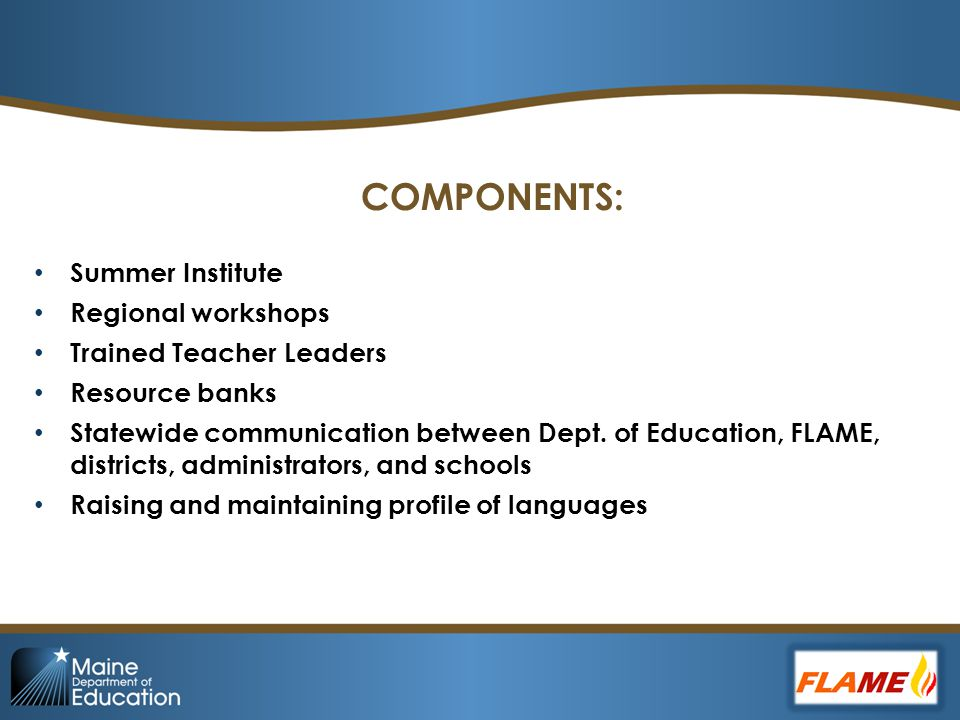 COMPONENTS: Summer Institute Regional workshops Trained Teacher Leaders Resource banks Statewide communication between Dept.