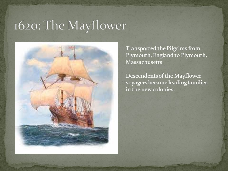 Transported the Pilgrims from Plymouth, England to Plymouth, Massachusetts Descendents of the Mayflower voyagers became leading families in the new colonies.