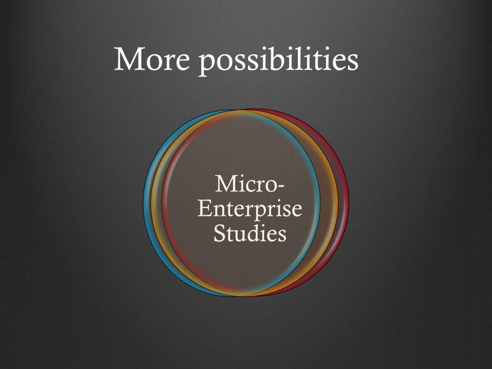 More possibilities Micro- Enterprise Studies