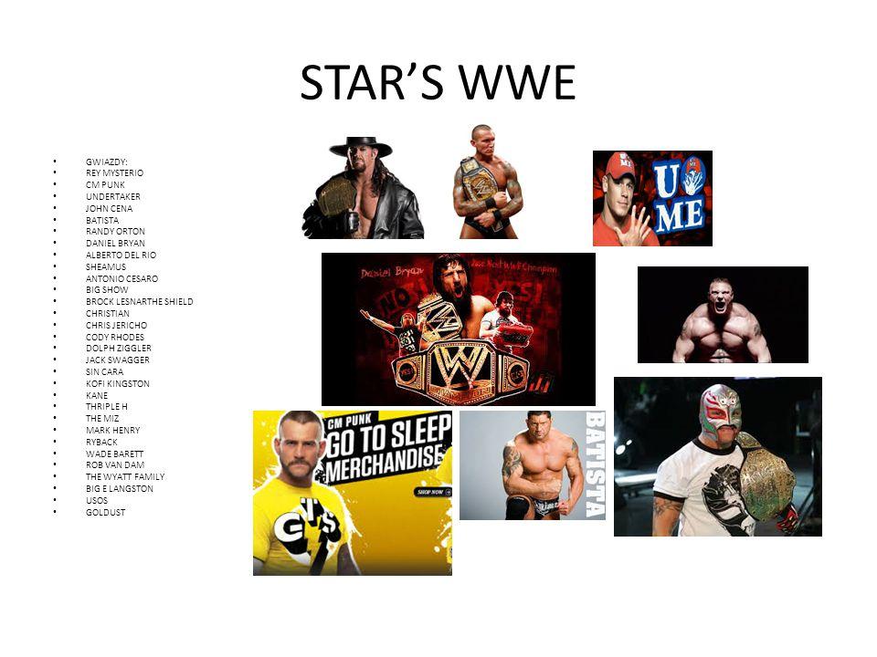 STAR'S WWE GWIAZDY: REY MYSTERIO CM PUNK UNDERTAKER JOHN CENA BATISTA RANDY ORTON DANIEL BRYAN ALBERTO DEL RIO SHEAMUS ANTONIO CESARO BIG SHOW BROCK L