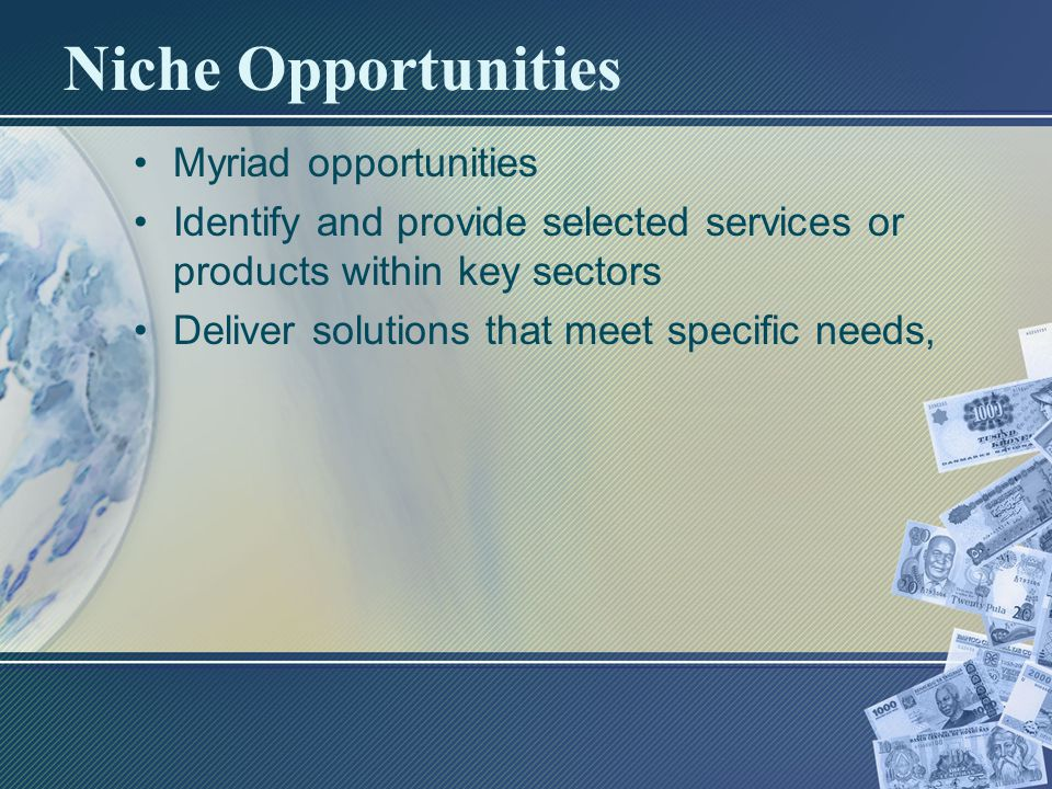 Niche Opportunities Myriad opportunities Identify and provide selected services or products within key sectors Deliver solutions that meet specific needs,