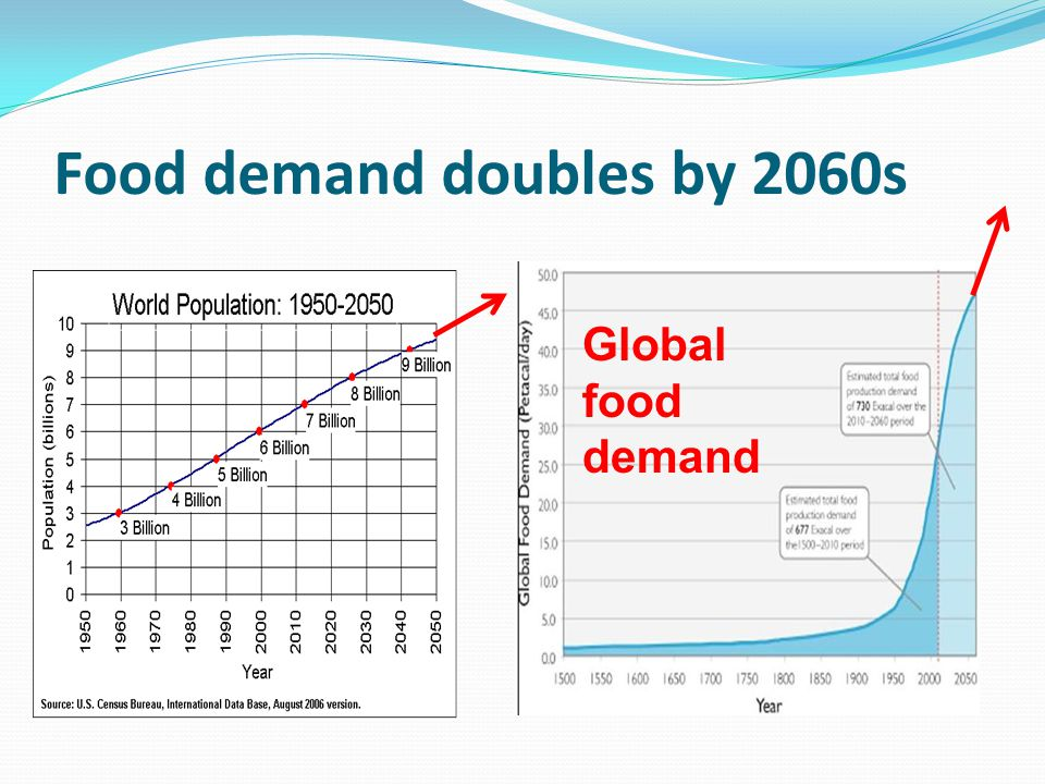 Food demand doubles by 2060s Global food demand