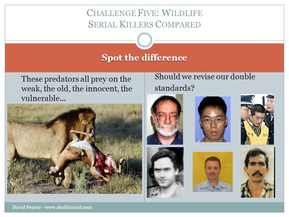 Spot the difference David Pearce - www.abolitionist.com These predators all prey on the weak, the old, the innocent, the vulnerable...