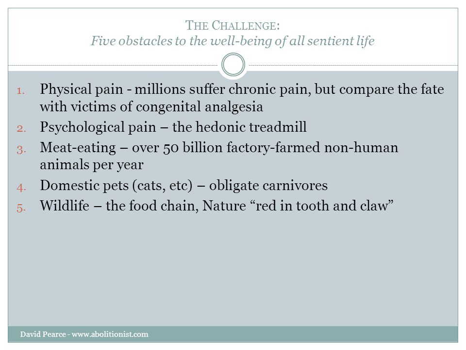 O PPOSITES Hundreds of millions of people worldwide suffer from chronic pain.