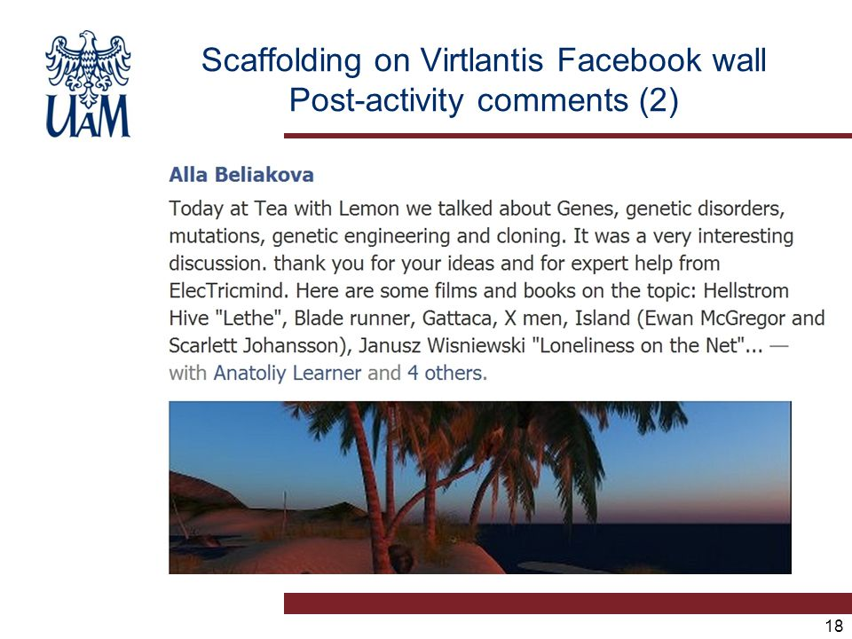 18 Scaffolding on Virtlantis Facebook wall Post-activity comments (2)