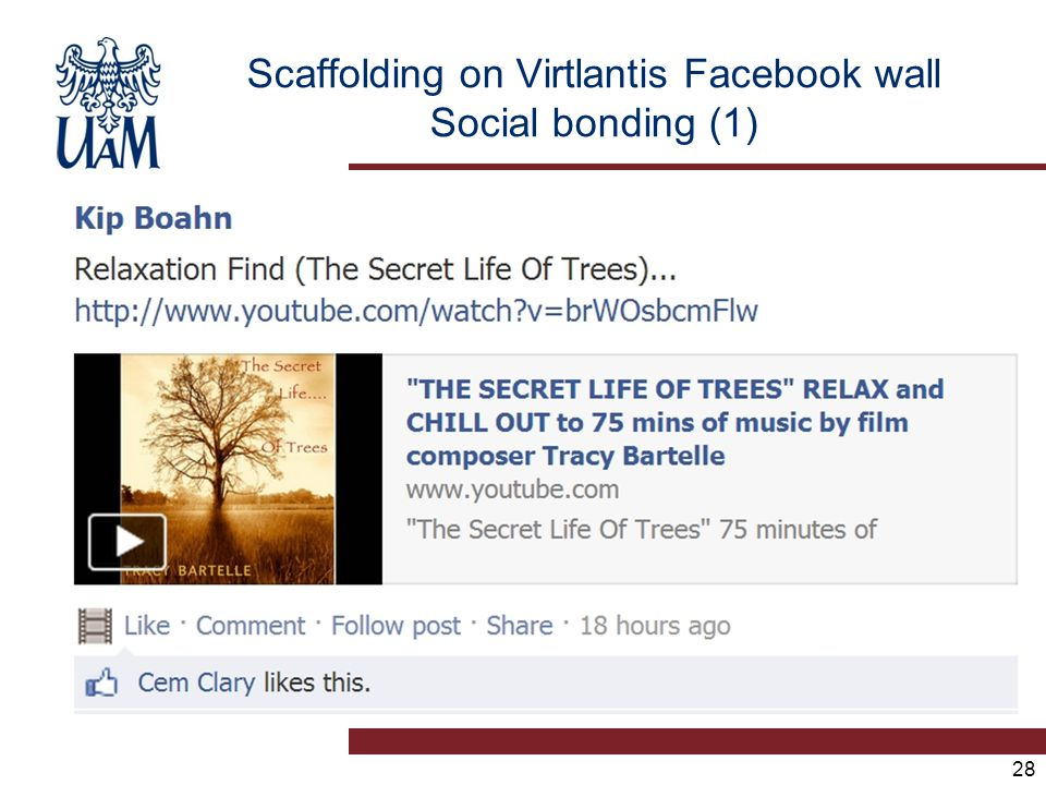 28 Scaffolding on Virtlantis Facebook wall Social bonding (1)