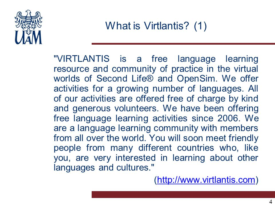 25 Scaffolding on Virtlantis Facebook wall Information requests (1)