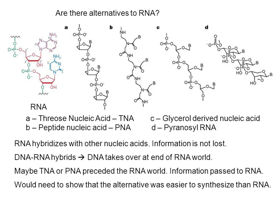 RNA Are there alternatives to RNA.