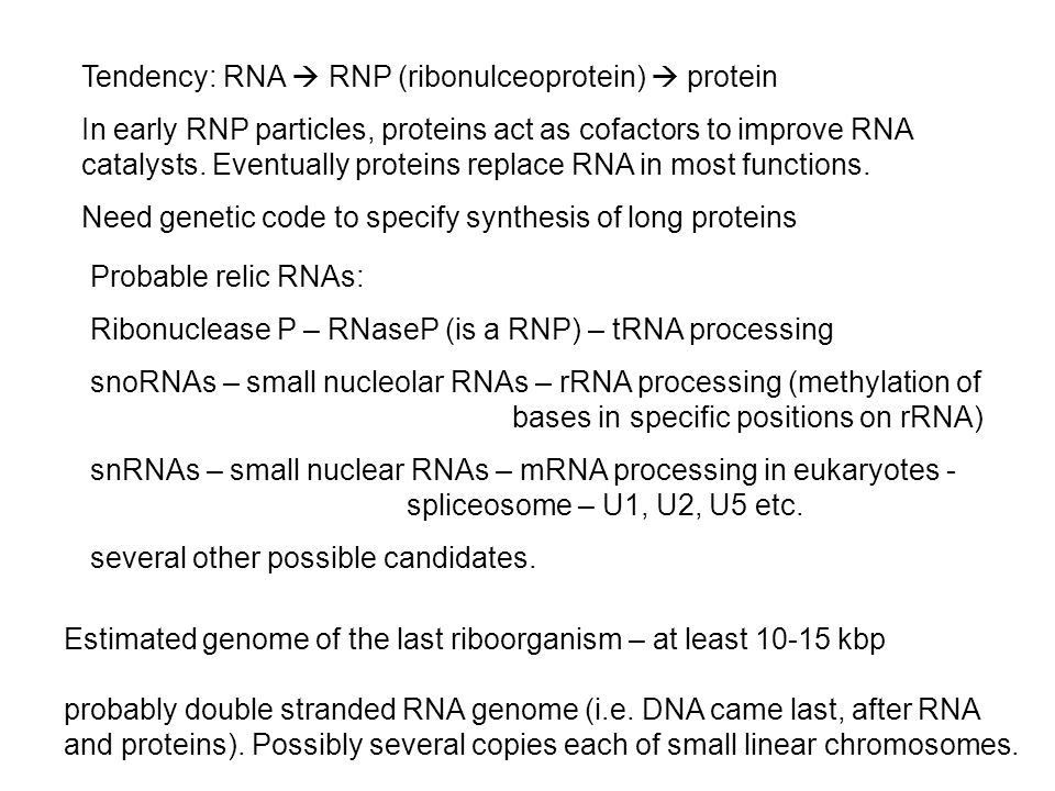 Tendency: RNA  RNP (ribonulceoprotein)  protein In early RNP particles, proteins act as cofactors to improve RNA catalysts.