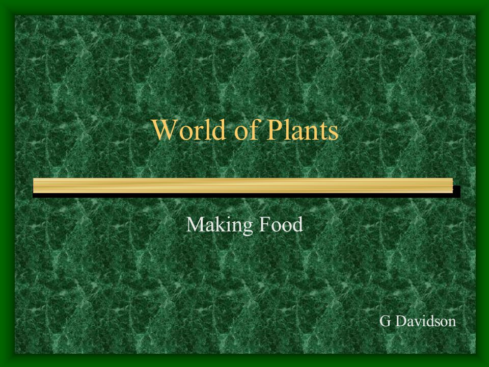 World of Plants Making Food G Davidson
