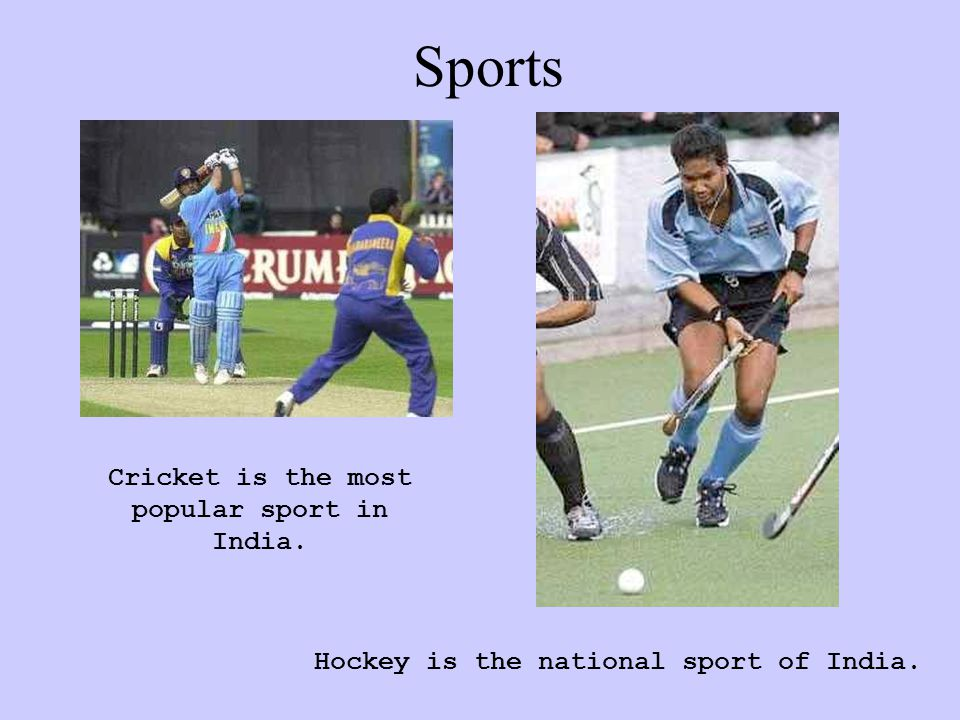 Sports Cricket is the most popular sport in India. Hockey is the national sport of India.