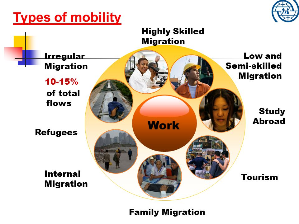 Highly Skilled Migration Family Migration Internal Migration Tourism Irregular Migration Study Abroad Types of mobility 10-15% of total flows Low and Semi-skilled Migration Work Refugees Types of mobility