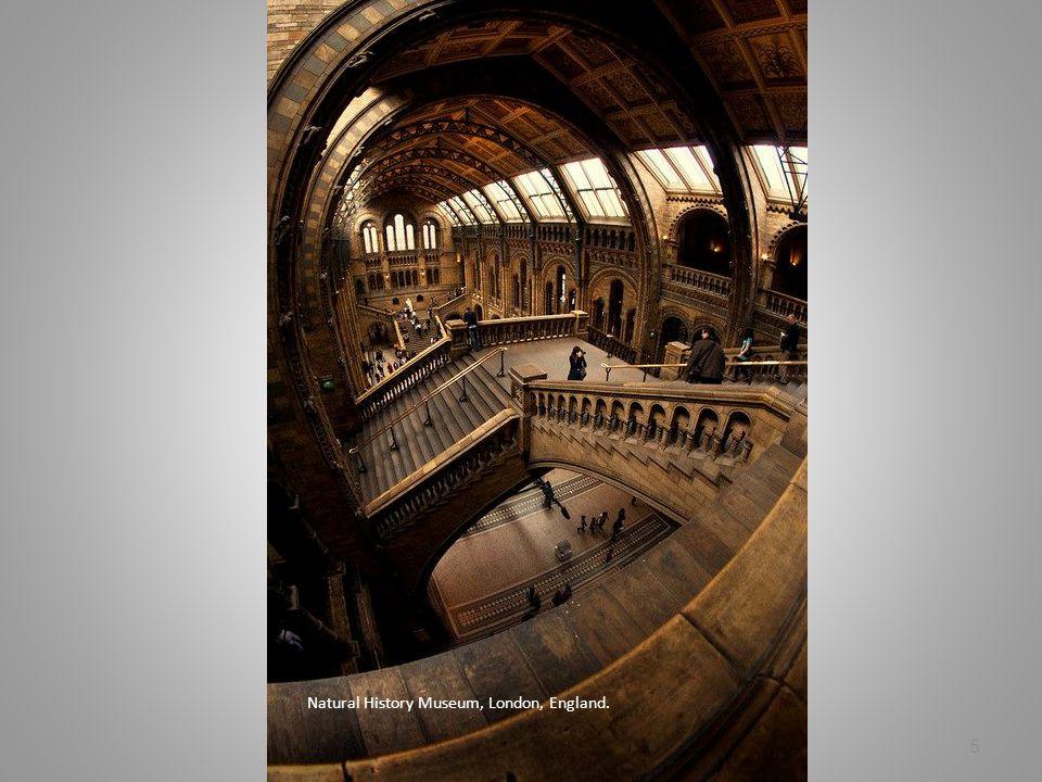 Natural History Museum, London, England. 5