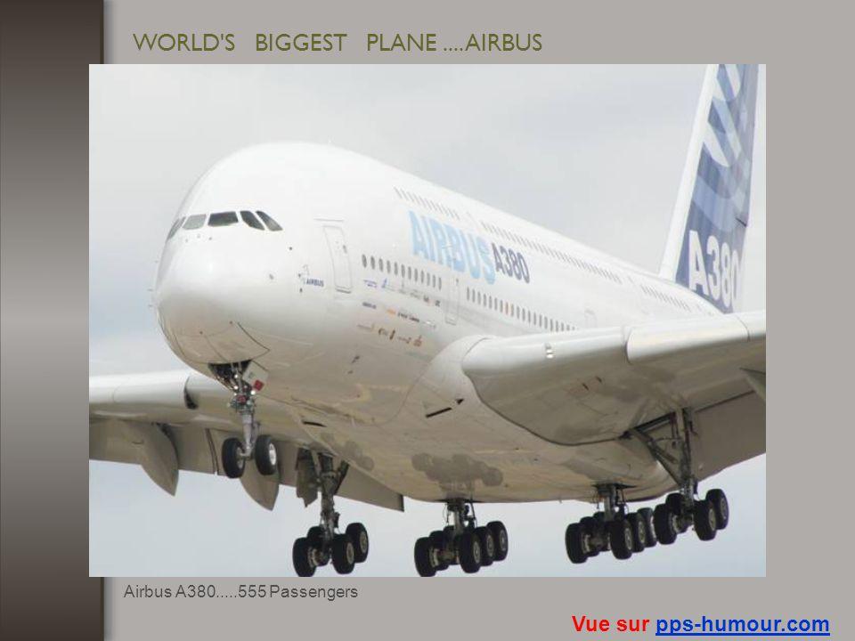 WORLD'S BIGGEST PASSENGER-SHIP Vue sur pps-humour.compps-humour.com