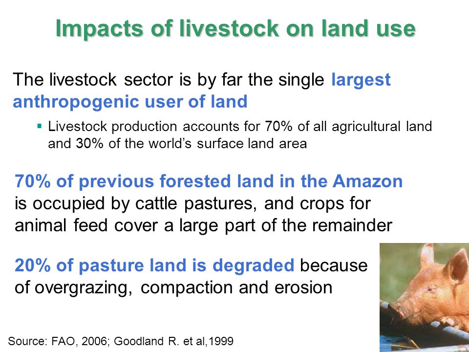11 IPCC Impacts of livestock on land use The livestock sector is by far the single largest anthropogenic user of land  Livestock production accounts