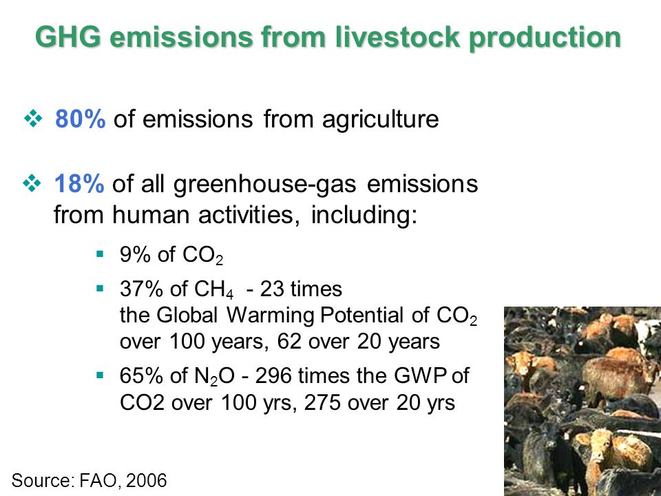 6 IPCC GHG emissions from livestock production  80% of emissions from agriculture  18% of all greenhouse-gas emissions from human activities, including:  9% of CO 2  37% of CH 4 - 23 times the Global Warming Potential of CO 2 over 100 years, 62 over 20 years  65% of N 2 O - 296 times the GWP of CO2 over 100 yrs, 275 over 20 yrs Source: FAO, 2006