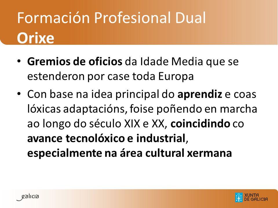 Formación Profesional Dual Orixe Gremios de oficios da Idade Media que se estenderon por case toda Europa Con base na idea principal do aprendiz e coa