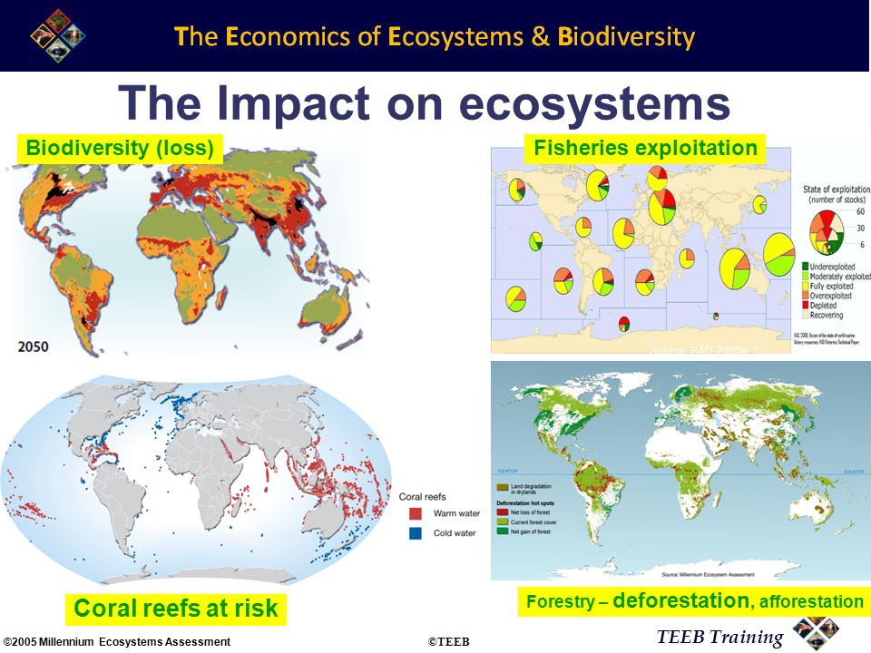 TEEB Training Source: FAO 2005a: 7 Source: Nellemann et al 2008: 22 Fisheries exploitation Forestry – deforestation, afforestation Biodiversity (loss) Coral reefs at risk The Impact on ecosystems ©2005 Millennium Ecosystems Assessment ©TEEB