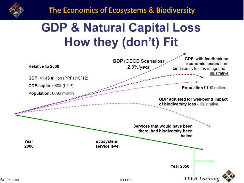 TEEB Training GDP & Natural Capital Loss How they (don't) Fit Year 2000 Year 2050 Services that would have been there, had biodiversity been halted Ecosystem service level Population 9100 million GDP (OECD Scenarios) 2.8%/year GDP, with feedback on economic losses from biodiversity losses integrated - illustrative Relative to 2000 Population: 6092 million GDP: 41.4$ trillion (PPP) (10^12) GDP/capita: 680$ (PPP) GDP adjusted for well-being impact of biodiversity loss - illustrative © IEEP, 2009 ©TEEB