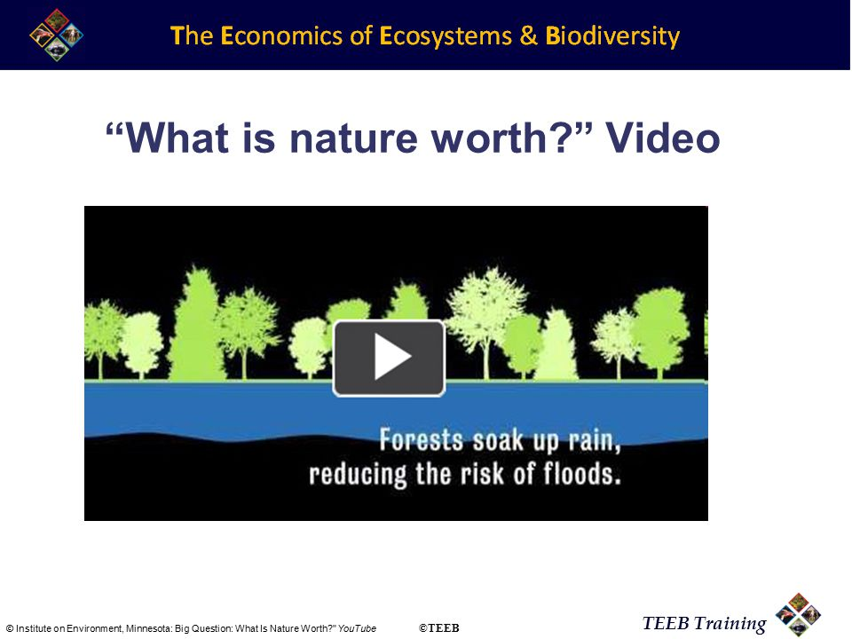 TEEB Training What is nature worth Video © Institute on Environment, Minnesota: Big Question: What Is Nature Worth YouTube ©TEEB
