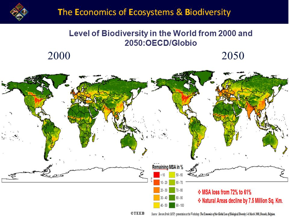 TEEB Training 2000 2050 Level of Biodiversity in the World from 2000 and 2050:OECD/Globio ©TEEB