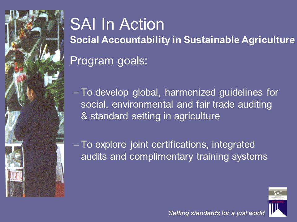 Setting standards for a just world SAI In Action Program goals: –To develop global, harmonized guidelines for social, environmental and fair trade aud