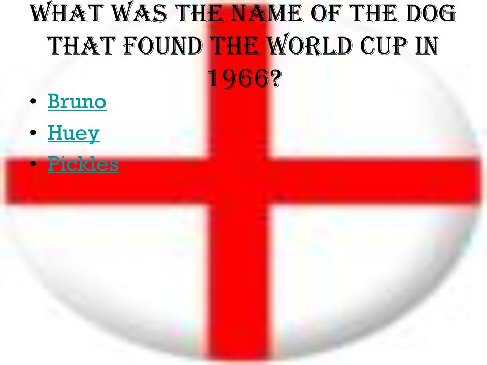 What was the name of the dog that found the world cup in 1966? Bruno Huey Pickles