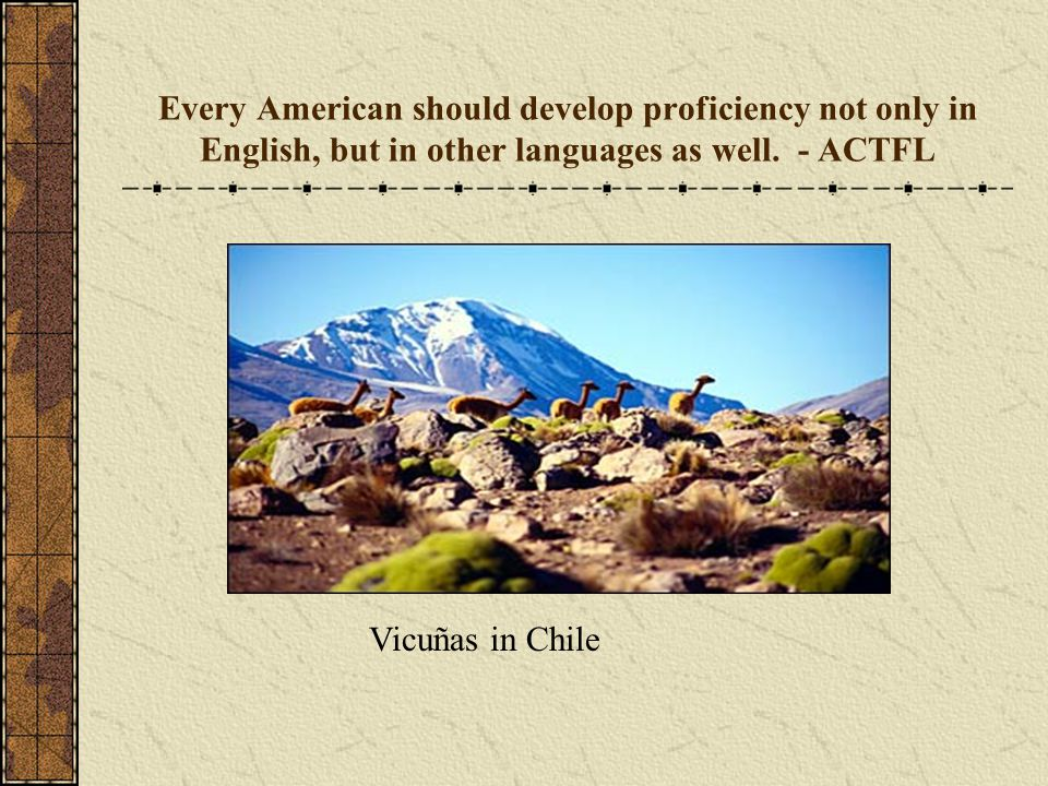 Every American should develop proficiency not only in English, but in other languages as well.