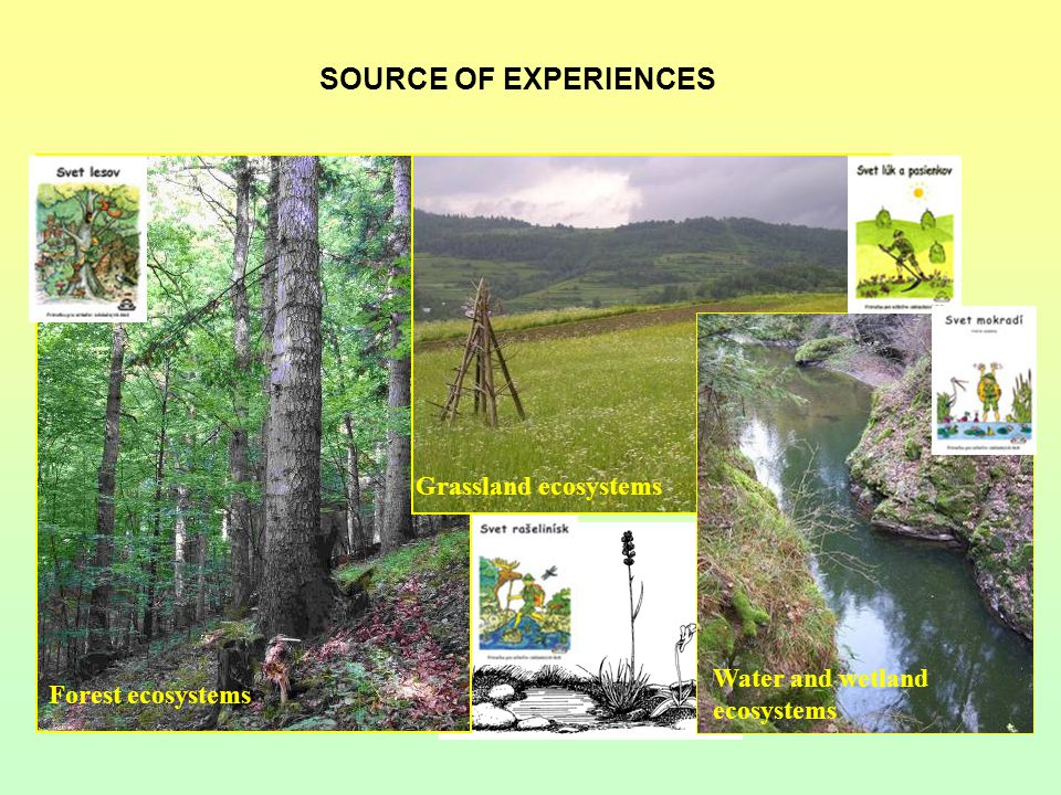 SOURCE OF EXPERIENCES Forest ecosystems Water and wetland ecosystems Grassland ecosystems