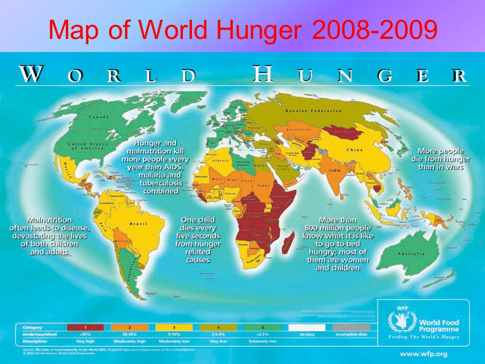 2 Map of World Hunger 2008-2009