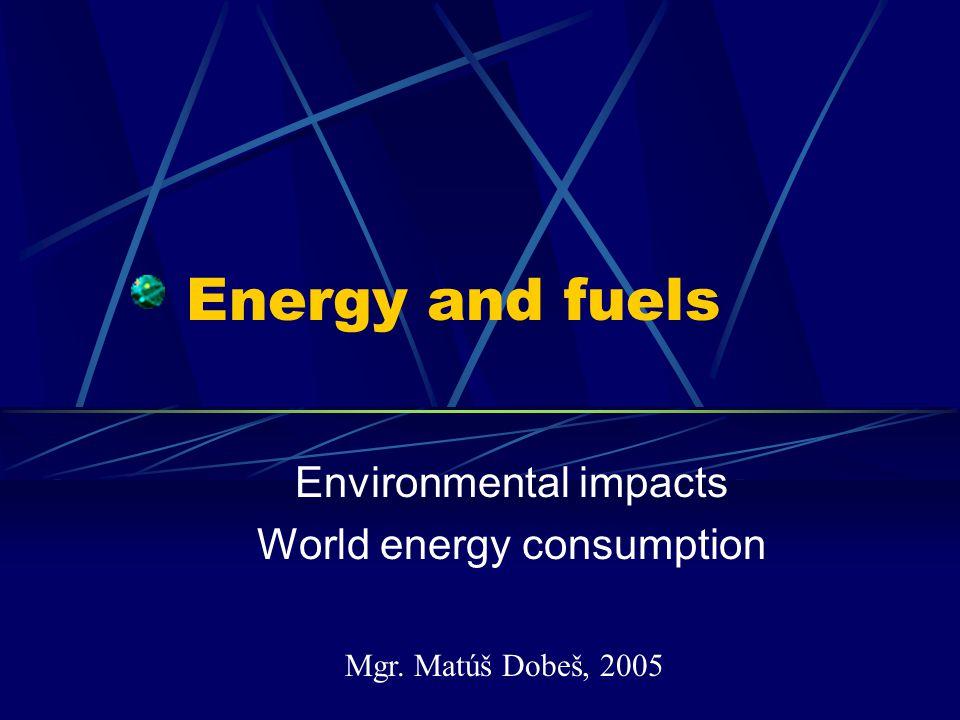 World energy consumption/capita
