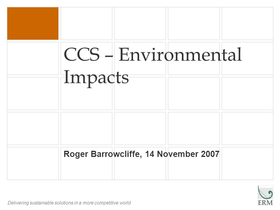 Delivering sustainable solutions in a more competitive world CCS – Environmental Impacts Roger Barrowcliffe, 14 November 2007