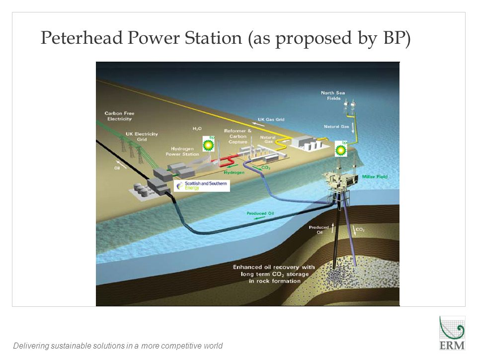 Delivering sustainable solutions in a more competitive world Peterhead Power Station (as proposed by BP)