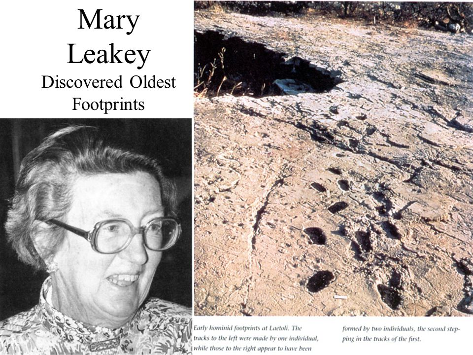 Mary Leakey Discovered Oldest Footprints