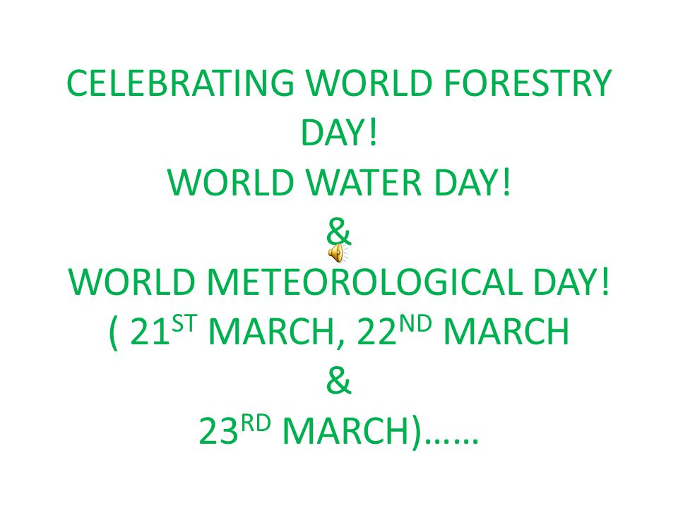 CELEBRATING WORLD FORESTRY DAY! WORLD WATER DAY! & WORLD METEOROLOGICAL DAY! ( 21 ST MARCH, 22 ND MARCH & 23 RD MARCH)……