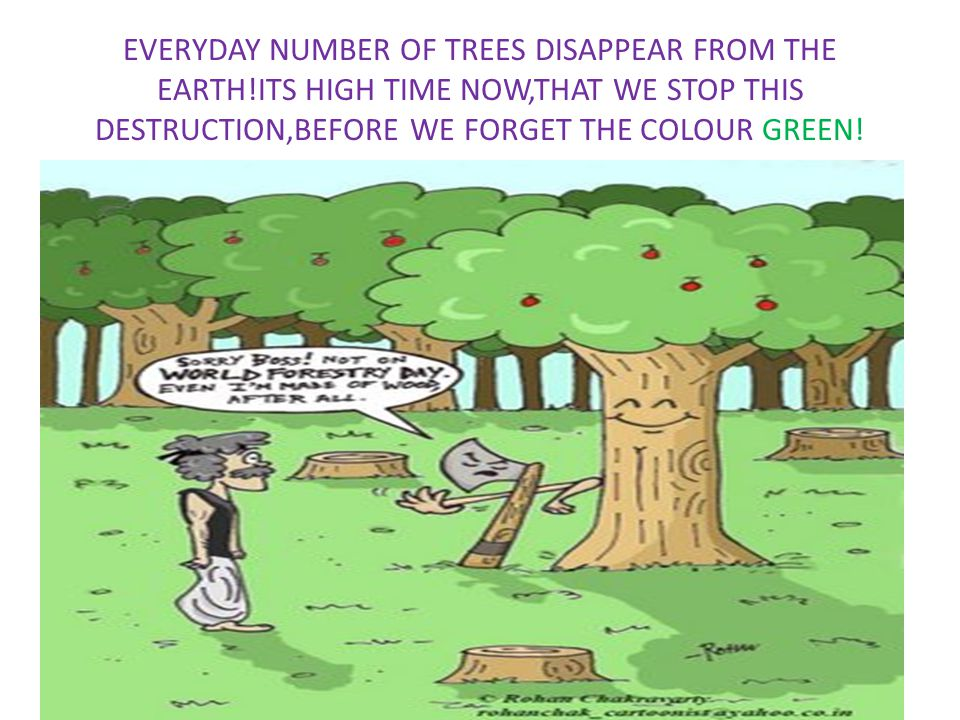 EVERYDAY NUMBER OF TREES DISAPPEAR FROM THE EARTH!ITS HIGH TIME NOW,THAT WE STOP THIS DESTRUCTION,BEFORE WE FORGET THE COLOUR GREEN!