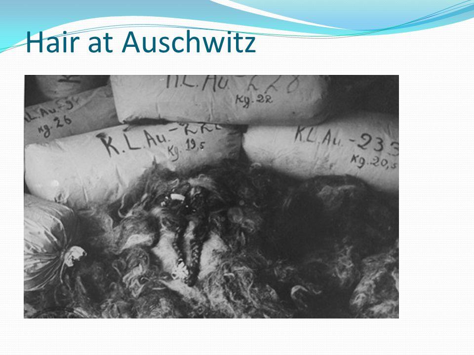 Hair at Auschwitz